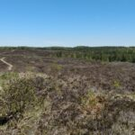 Kõrvemaa Nature Reserve
