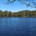 Kõrvemaa Nature Reserve hiking