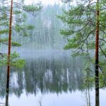 Private Day-Trip in Tallinn and Lahemaa National Park 8